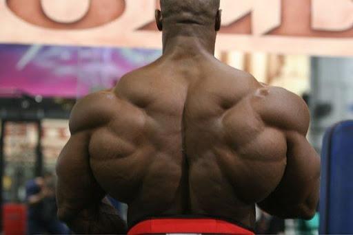 Результат занятий на вертикальном блоке для развития широчайших мышц спины.
